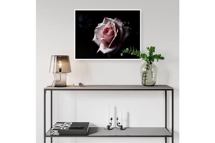 Pink Rose Flower Photograph Nature Wall Art