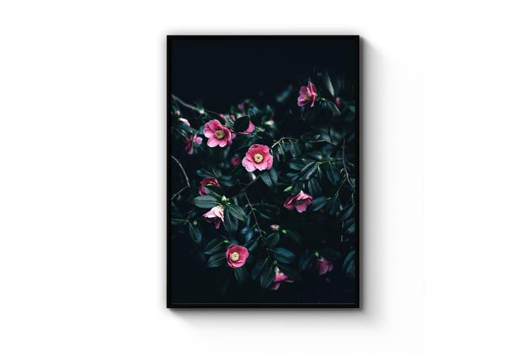 Pink Blooming Flowers Photograph Wall Art