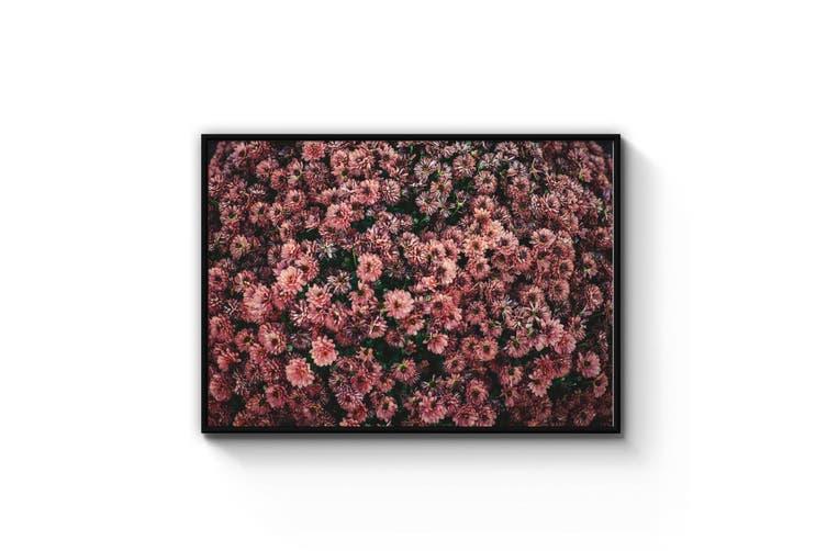 Pink Flower Bush Photograph Wall Art