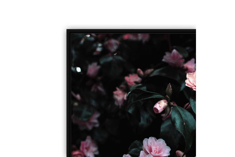 Pink Flowers Nature Photograph Wall Art