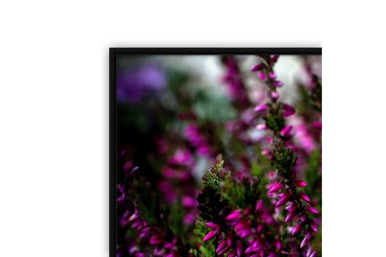 Purple Heather Nature Photography Wall Art
