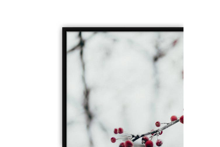 Red Berries Winter Photography Wall Art