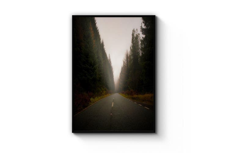 Wooded Road Landscape Photograph Wall Art