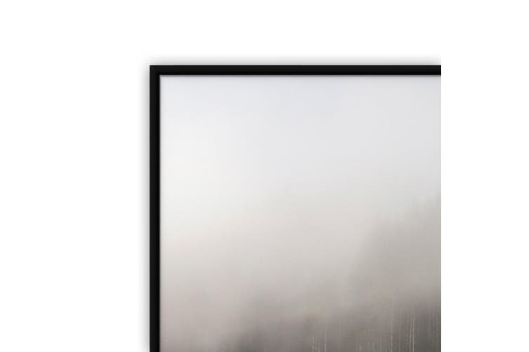 Shrouded Forest Nature Photograph Wall Art