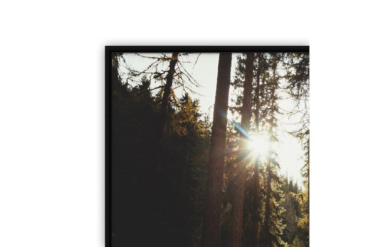 Morning Nature Sunset Photograph Wall Art