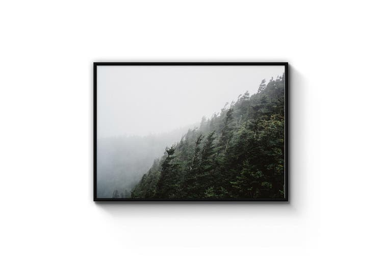 Windy Forest Lansdcape Photograph Wall Art