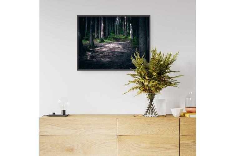 Wooded Walk Wall Landscape Photograph Art