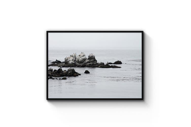 Wild Rocks Coastal Photograph Wall Art