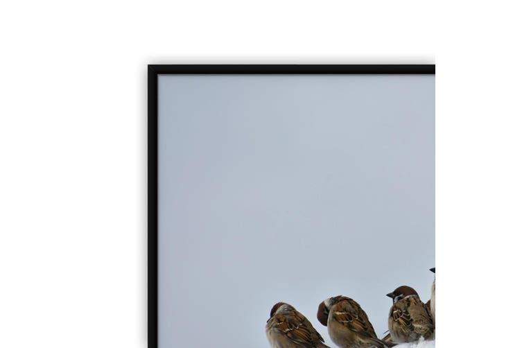 Winter Sparrows Bird Photograph Wall Art