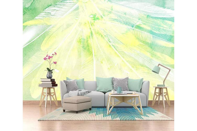 3D Home Wallpaper Colored Feather 1207 BCHW Wall Murals Woven paper (need glue), XXXL 416cm x 254cm (WxH)(164''x100'')