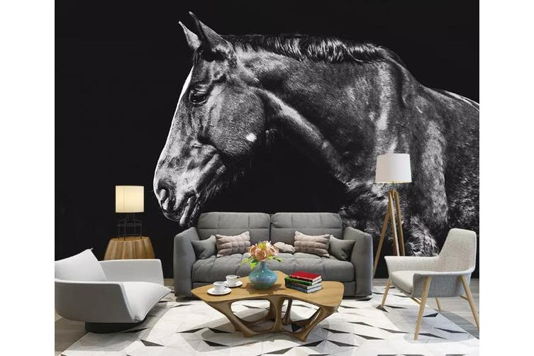 3D Home Wallpaper Black Horse 1200 BCHW Wall Murals Self-adhesive Vinyl, XXXXL 520cm x 290cm (WxH)(205''x114'')