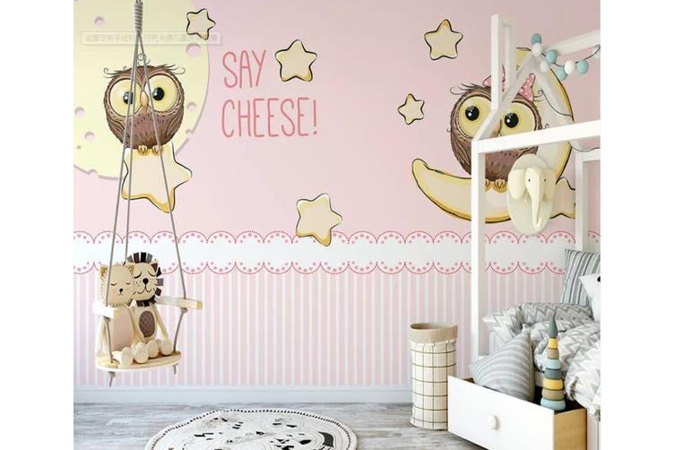 3D Home Wallpaper Star Moon 1152 BCHW Wall Murals Woven paper (need glue), XXXXL 520cm x 290cm (WxH)(205''x114'')