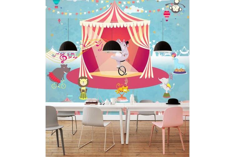 3D Home Wallpaper Hippo Biking D56 ACH Wall Murals Self-adhesive Vinyl, XXXXL 520cm x 290cm (WxH)(205''x114'')