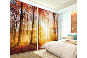 3D Morning Forest 103 Curtains Drapes