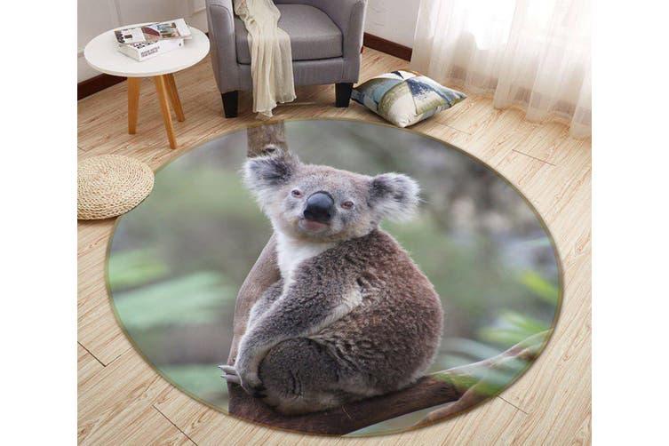 3D Koala Baby 069 Animal Round Non Slip Rug Mat, 120cm(47.2'')