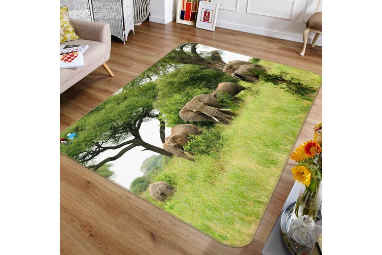 "3D Lawn Elephant 364 Non Slip Rug Mat, 40cmx60cm (15.7""x23.6"")"