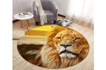 3D Lion Head 013 Round Non Slip Rug Mat, 160cm(63'')