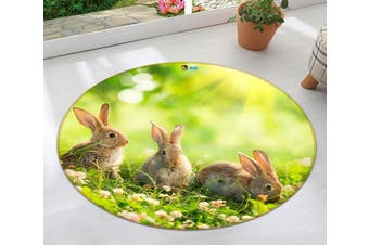 3D Cute Rabbit 006 Round Non Slip Rug Mat, 120cm(47.2'')