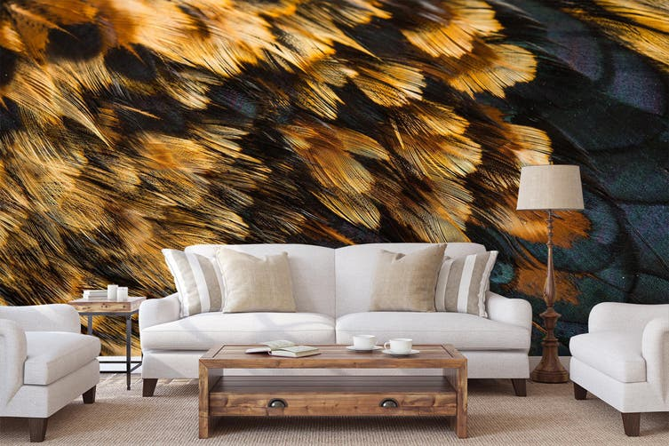 3D Feather Texture 045 Wall Murals Wallpaper Murals Self-adhesive Vinyl, XXXXL 520cm x 290cm (WxH)(205''x114'')