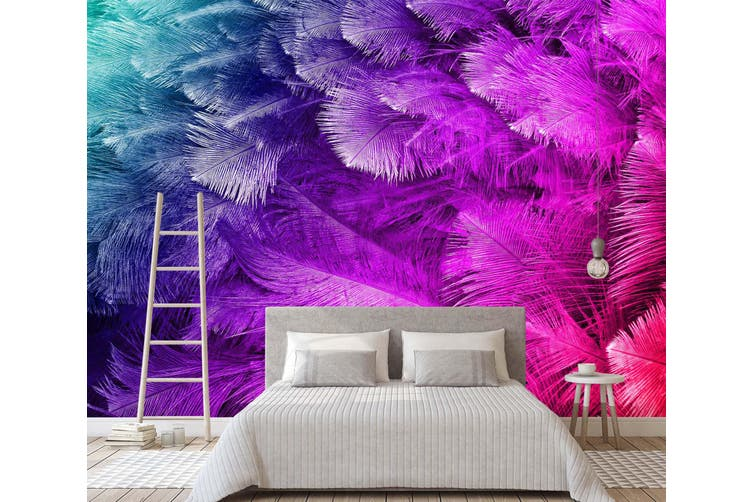 3D Colourful Feather 039 Wall Murals Wallpaper Murals Woven paper (need glue), XXL 312cm x 219cm (WxH)(123''x87'')