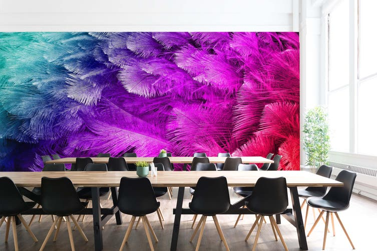 3D Colourful Feather 039 Wall Murals Wallpaper Murals Woven paper (need glue), XXXXL 520cm x 290cm (WxH)(205''x114'')