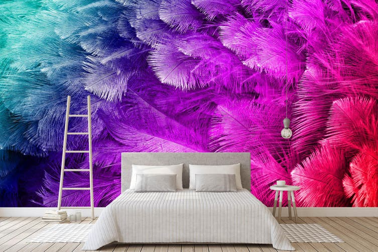 3D Colourful Feather 039 Wall Murals Wallpaper Murals Self-adhesive Vinyl, XXXL 416cm x 254cm (WxH)(164''x100'')