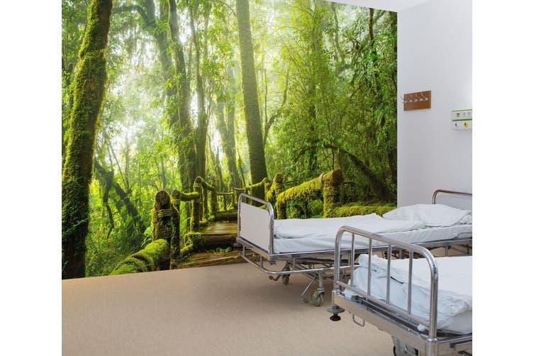 3D Tropical Rain Forest 338 Wall Murals Wallpaper Murals Woven paper (need glue), XL 208cm x 146cm (WxH)(82''x58'')