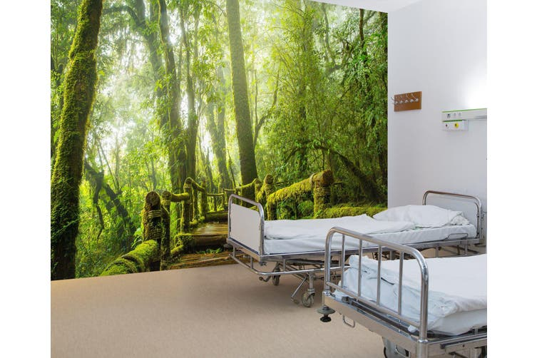 3D Tropical Rain Forest 338 Wall Murals Wallpaper Murals Self-adhesive Vinyl, XXXXL 520cm x 290cm (WxH)(205''x114'')