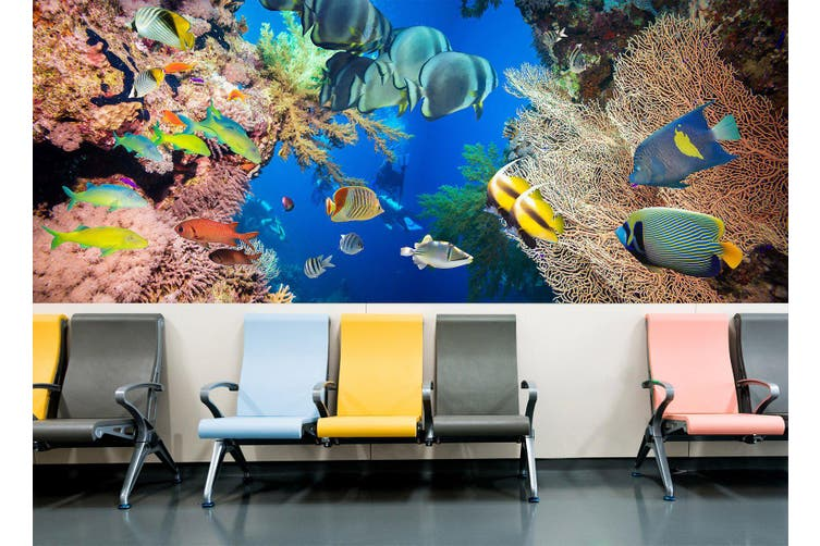 3D Submarine Coral 337 Wall Murals Wallpaper Murals Woven paper (need glue), XXL 312cm x 219cm (WxH)(123''x87'')