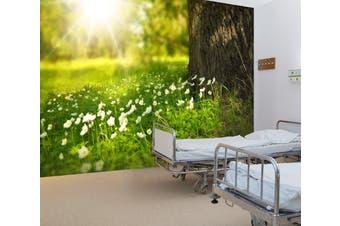 3D Small White Flower 336 Wall Murals Wallpaper Murals Self-adhesive Vinyl, XL 208cm x 146cm (WxH)(82''x58'')