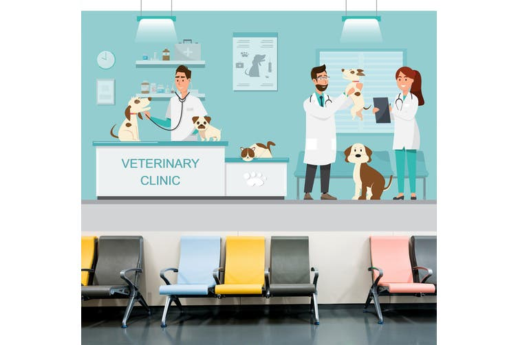 3D Veterinary Dog 335 Wall Murals Wallpaper Murals Self-adhesive Vinyl, XL 208cm x 146cm (WxH)(82''x58'')