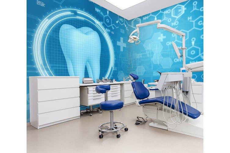 3D Dental Examination 331 Wall Murals Wallpaper Murals Woven paper (need glue), XXL 312cm x 219cm (WxH)(123''x87'')