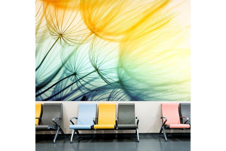 3D Beautiful Dandelion 313 Wall Murals Wallpaper Murals Woven paper (need glue), XL 208cm x 146cm (WxH)(82''x58'')
