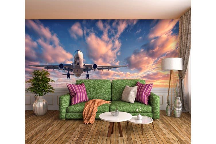 3D Dusk Plane 381 Vehicle Wall Murals Wallpaper Murals Self-adhesive Vinyl, XL 208cm x 146cm (WxH)(82''x58'')