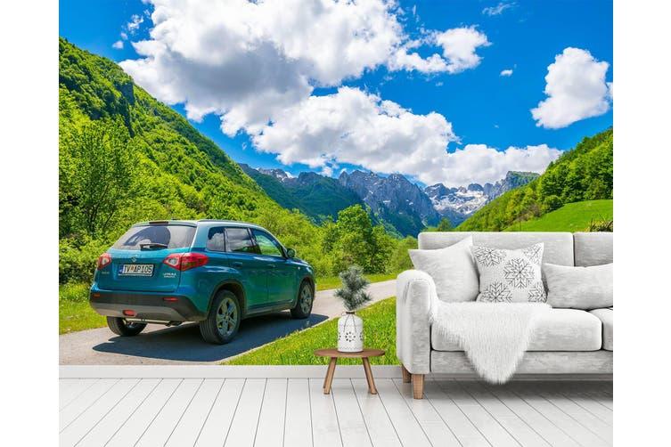3D Green Landscape Car 360 Vehicle Wall Murals Wallpaper Murals Self-adhesive Vinyl, XXL 312cm x 219cm (WxH)(123''x87'')