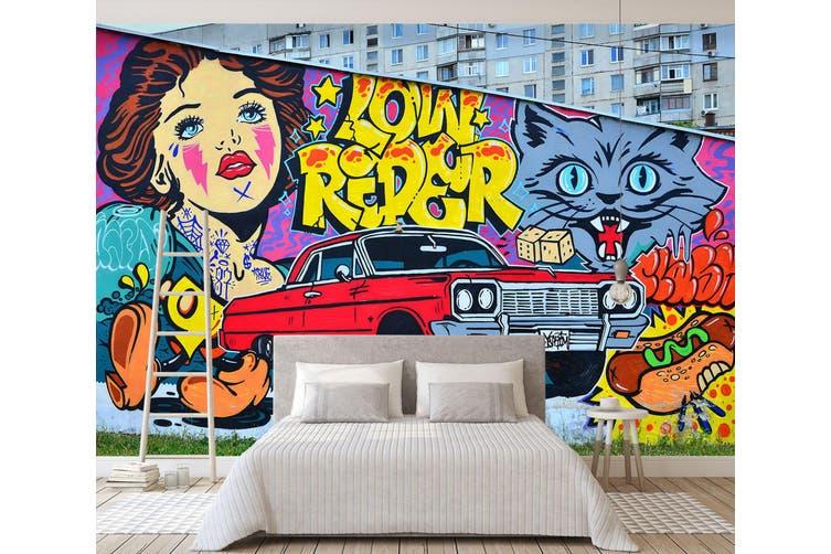 3D Cartoon Cat Car 355 Vehicle Wall Murals Wallpaper Murals Self-adhesive Vinyl, XXL 312cm x 219cm (WxH)(123''x87'')