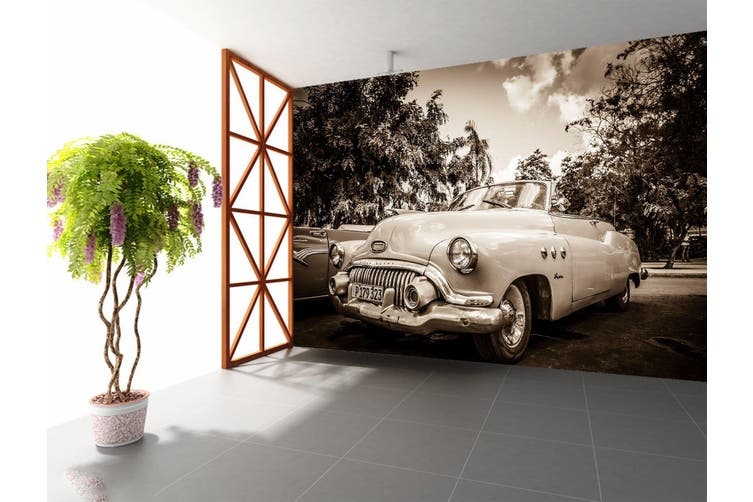 3D Park Convertible 353 Vehicle Wall Murals Wallpaper Murals Self-adhesive Vinyl, XL 208cm x 146cm (WxH)(82''x58'')