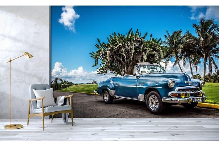 3D Convertible Coconut 343 Vehicle Wall Murals Wallpaper Murals Self-adhesive Vinyl, XXXXL 520cm x 290cm (WxH)(205''x114'')