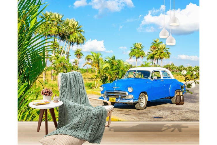 3D Coconut Tree Car 315 Vehicle Wall Murals Wallpaper Murals Woven paper (need glue), XXXL 416cm x 254cm (WxH)(164''x100'')