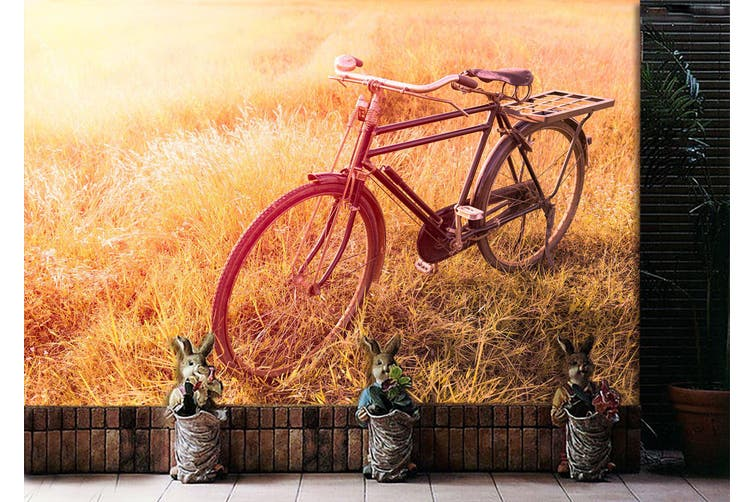 3D Twilight Grass Bike 313 Vehicle Wall Murals Wallpaper Murals Woven paper (need glue), XL 208cm x 146cm (WxH)(82''x58'')