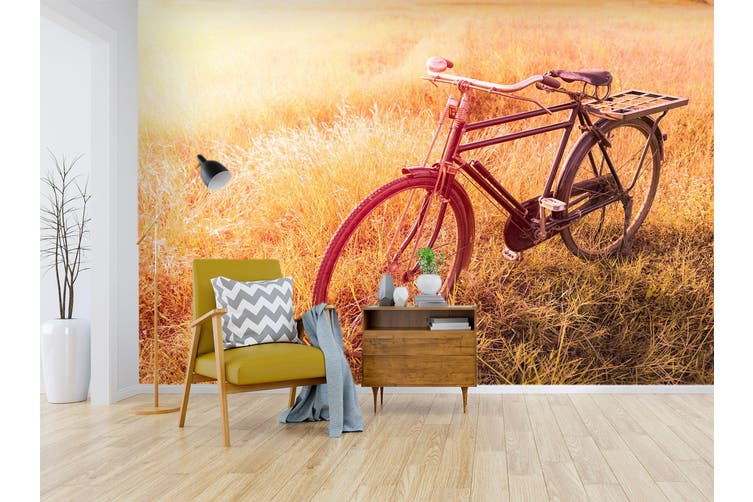 3D Twilight Grass Bike 313 Vehicle Wall Murals Wallpaper Murals Self-adhesive Vinyl, XL 208cm x 146cm (WxH)(82''x58'')