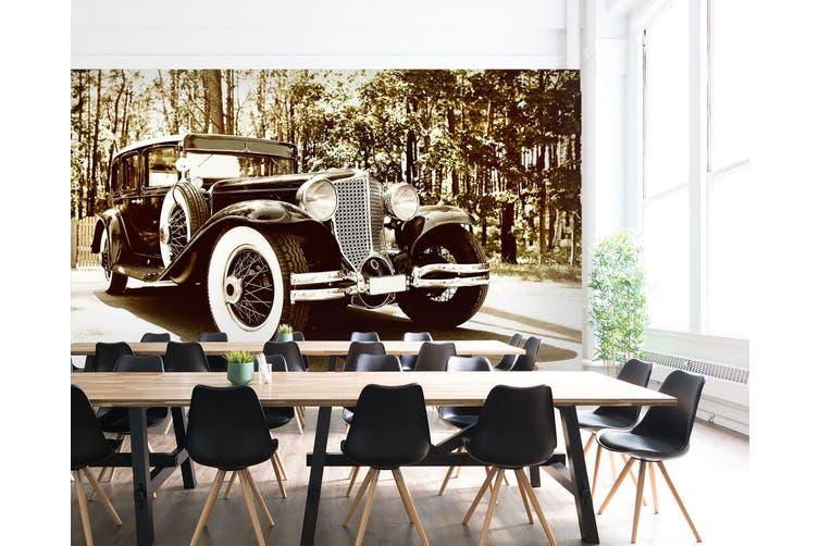 3D Classic Car Forest 299 Vehicle Wall Murals Wallpaper Murals Self-adhesive Vinyl, XXL 312cm x 219cm (WxH)(123''x87'')