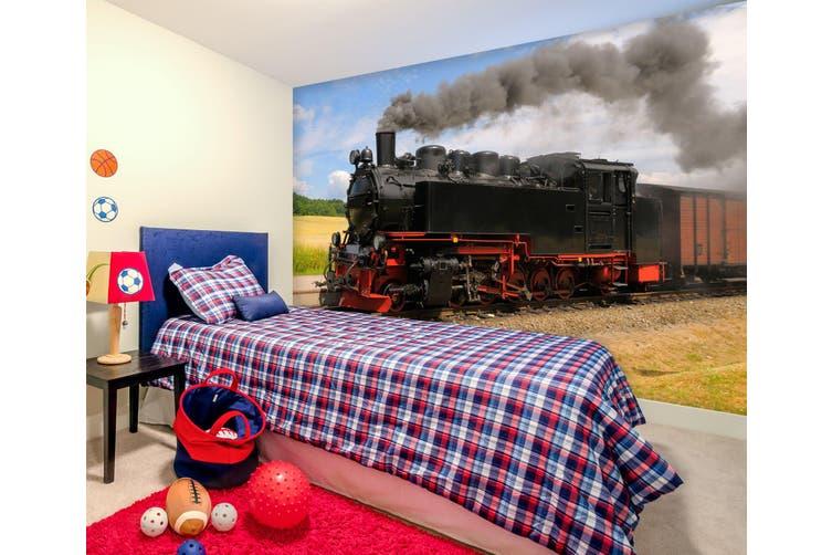 3D Steam Train 291 Vehicle Wall Murals Wallpaper Murals Self-adhesive Vinyl, XXL 312cm x 219cm (WxH)(123''x87'')
