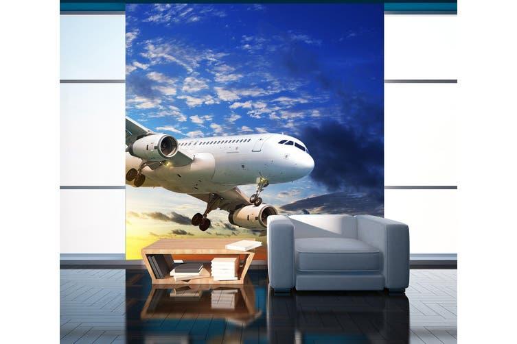 3D Sunset Aircraft 270 Vehicle Wall Murals Wallpaper Murals Self-adhesive Vinyl, XXL 312cm x 219cm (WxH)(123''x87'')