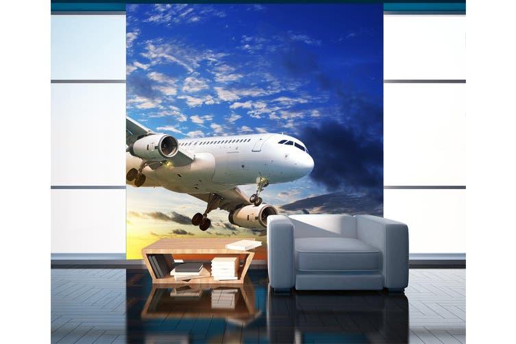 3D Sunset Aircraft 270 Vehicle Wall Murals Wallpaper Murals Self-adhesive Vinyl, XXXXL 520cm x 290cm (WxH)(205''x114'')