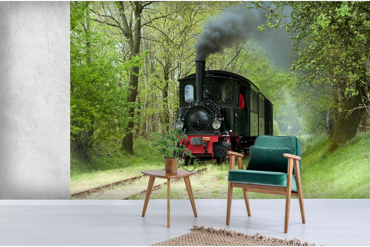 3D Black Train Woods 254 Vehicle Wall Murals Wallpaper Murals Woven paper (need glue), XXXXL 520cm x 290cm (WxH)(205''x114'')