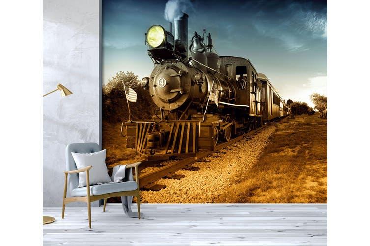 3D Vintage Train 250 Vehicle Wall Murals Wallpaper Murals Self-adhesive Vinyl, XXXXL 520cm x 290cm (WxH)(205''x114'')