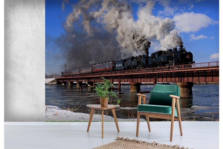 3D Train Black Smoke 174 Vehicle Wall Murals Wallpaper Murals Self-adhesive Vinyl, XXXL 416cm x 254cm (WxH)(164''x100'')