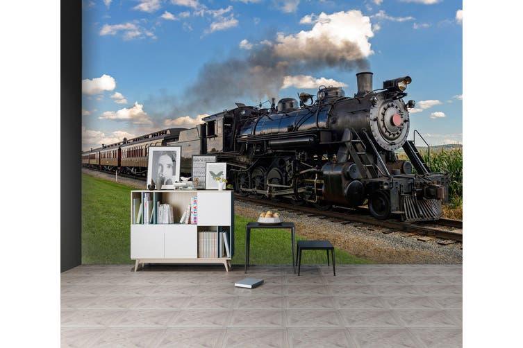 3D Train Head Smoke 171 Vehicle Wall Murals Wallpaper Murals Woven paper (need glue), XXXL 416cm x 254cm (WxH)(164''x100'')