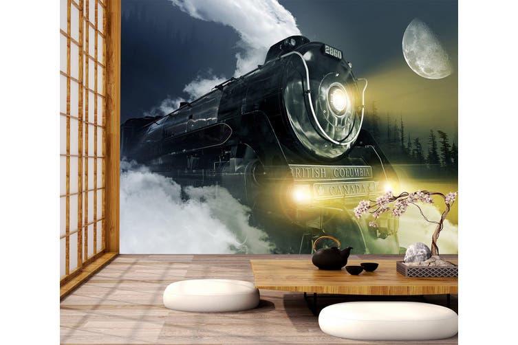 3D Moon Black Train 162 Vehicle Wall Murals Wallpaper Murals Woven paper (need glue), XL 208cm x 146cm (WxH)(82''x58'')